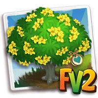 e_tree_heirloom_flower_oleander_yellow