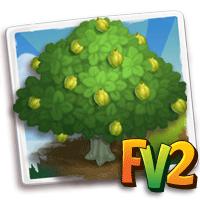 e_tree_quince_jumbo_cookes