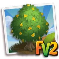e_tree_wood_redwood_andaman
