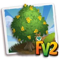 e_tree_heirloom_wood_redwood_andaman
