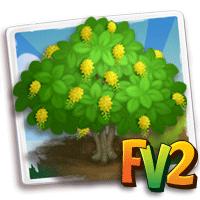 e_tree_flower_showergolden