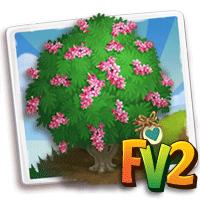e_tree_heirloom_flower_tamarisk_french