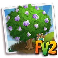 e_tree_heirloom_wood_teak_guinea_new