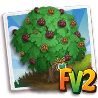 e_tree_heirloom_nut_walnut_black_eastern