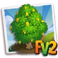 e_tree_wood_amboyna
