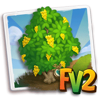 e_tree_heirloom_wood_amboyna